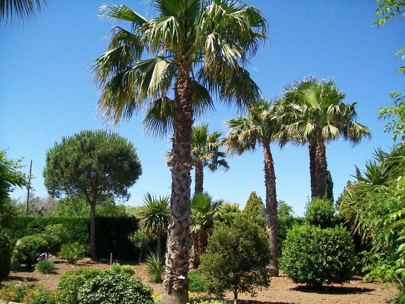 Casa nel verde ad un passo da Gallipoli e spiaggia, holiday rental in Baia di Gallipoli