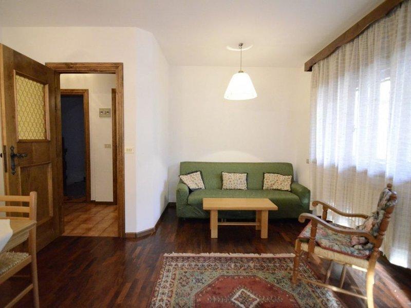 Cà Vallesella C : centrale con WIFi, holiday rental in Tai di Cadore