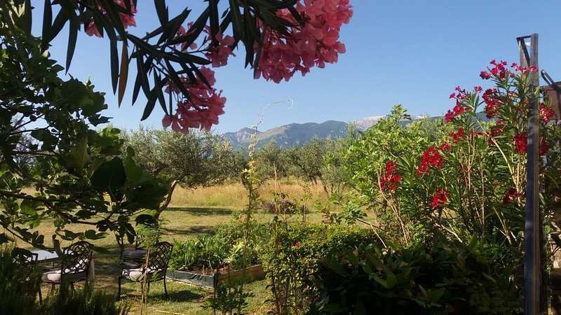 Beautiful self-contained stone farmhouse apartment, holiday rental in Rapino