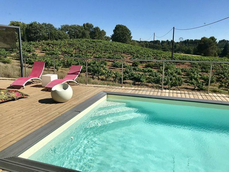 Magnifique Villa contemporaine au cœur des vignes, dans la commune d'Aix en Pce, holiday rental in Les Milles