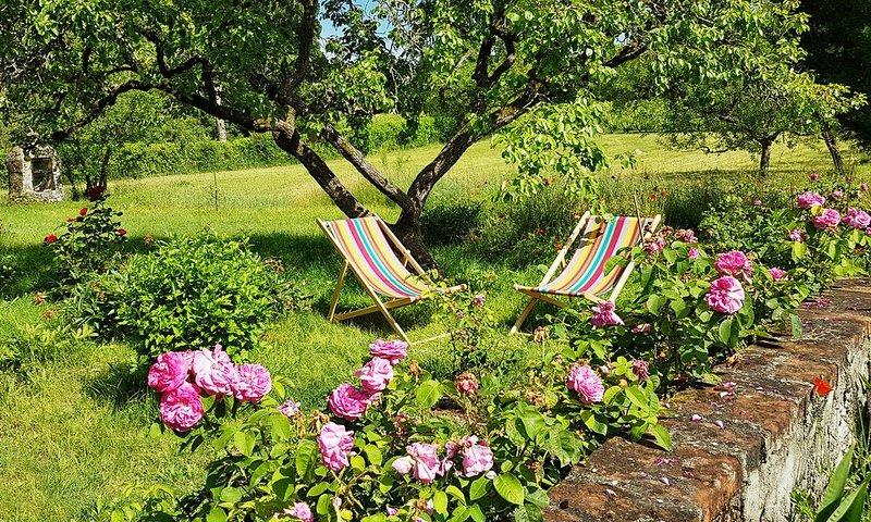 Meublé dans une jolie maison de campagne en bord de Loire entre Tours et Amboise, holiday rental in Montlouis-sur-Loire