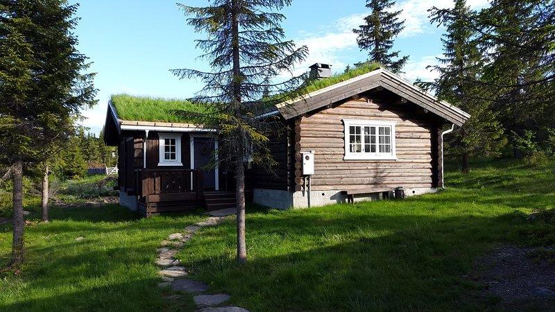 Koselig family cabin at Skeikampen in heart av Norway, casa vacanza a Sor-Fron Municipality