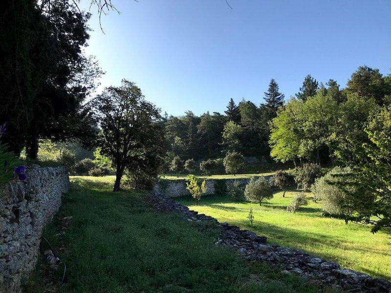 Mas familial au coeur du Lubéron, holiday rental in Bonnieux en Provence