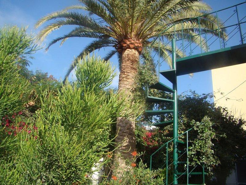 Studio Marcel, Confortable et économique, Ténérife, location de vacances à Buzanada