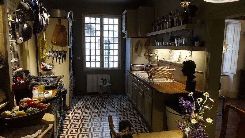 Charming character house in medieval village, holiday rental in Belloc