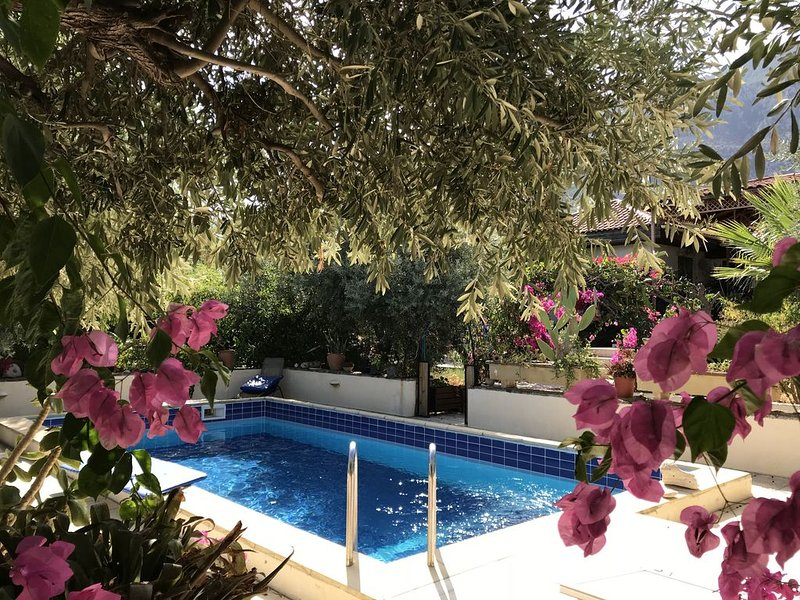 Gabi's Garden Cottage with private pool in Lapta, vacation rental in Lapta