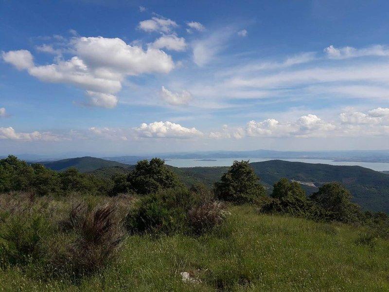 La Fattoria, casolare a Cortona con vista panoramica sul lago Trasimeno, location de vacances à Col di Morro