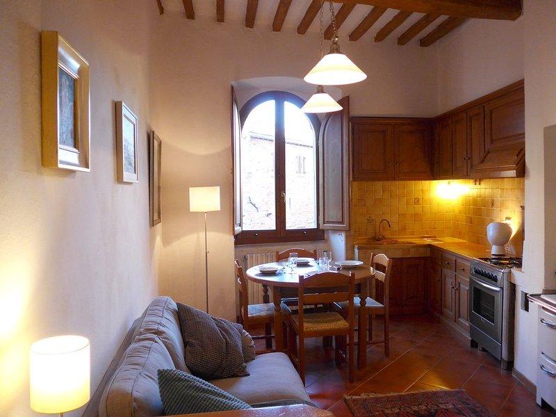 Artist's Apartment In The Historic Centre Of Anghiari, holiday rental in Anghiari