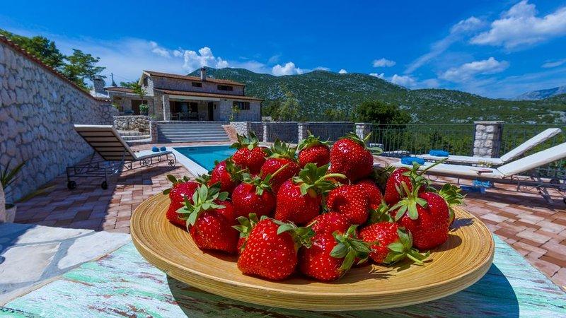 Villa Rustica Duge Njive *REDUCED PRICE AUG and SEP 2020!*, aluguéis de temporada em Zivogosce