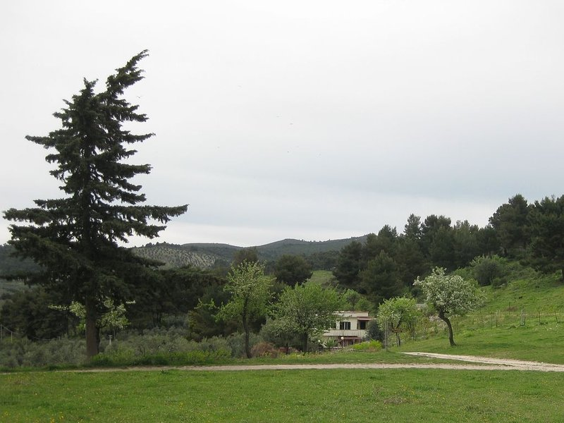 Vieste Appartamento in  azienda agricola a diretto contatto con la natura, vacation rental in Palude Mezzane