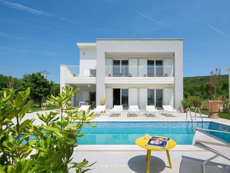 Stylish villa with private pool near Labin, alquiler de vacaciones en Viskovici