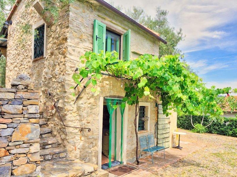 Il Passatempo - Romantica casa di campagna, rustica, per 2 persone, con giardino, casa vacanza a Diano Castello