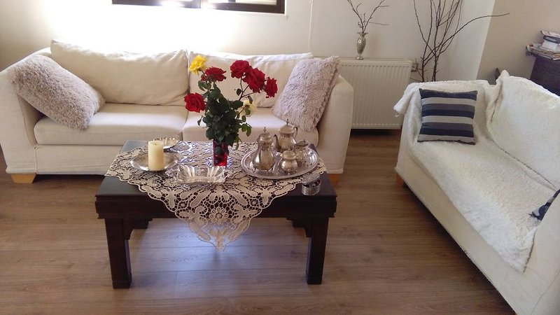 2 bedrooms apartment 20'walk to the center and 2 km from the beach., holiday rental in Amoudara