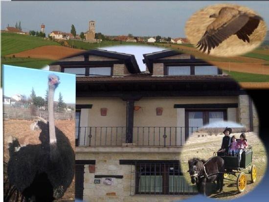 Jardín, barbacoa, WIFI, granja de animales, actividades para niños, holiday rental in Sepulveda