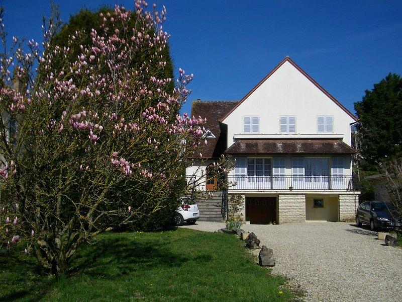 La maison de  Paulette, holiday rental in Chablis