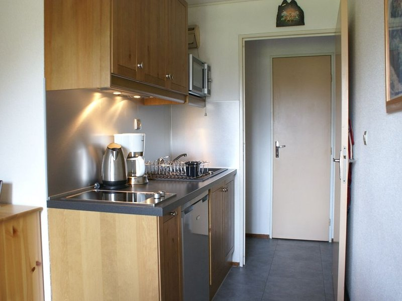 Nice little one bedroom apartment in Montriond, holiday rental in Montriond