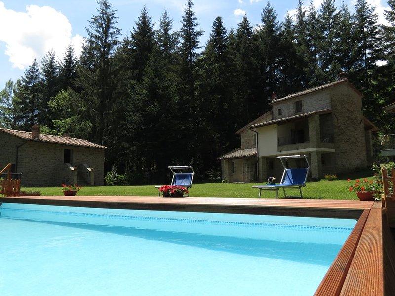 Poppi, Toscana -  Casa Adriana, accogliente dimora tipica nella Tenuta Rocche., holiday rental in Quota