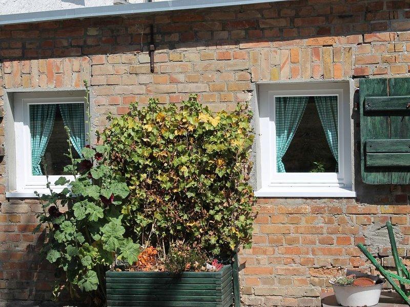 Luxurious Apartment in Damgarten with Garden, casa vacanza a Hessenburg