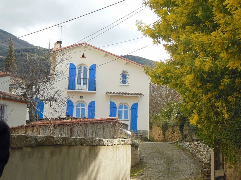 Detached character house with large garden, two minutes from Ceret town centre, alquiler de vacaciones en Céret