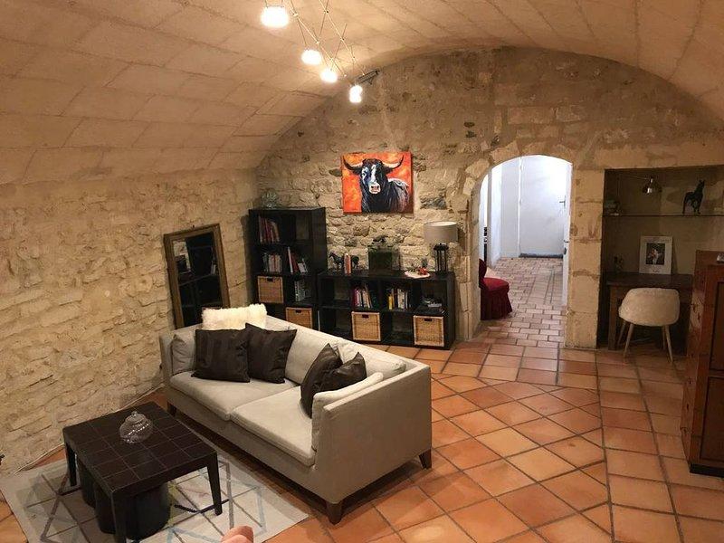N°5 - Appartement historique de 70m2 au coeur du Centre avec jardin, aluguéis de temporada em Fourques