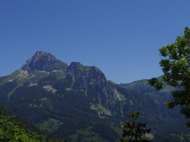 Lovely alpine studio at foot of ski slopes, holiday rental in Vacheresse