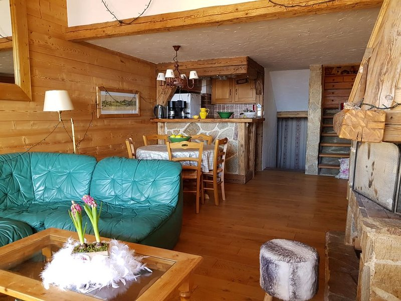 GRAND APPARTEMENT DUPLEX TYPE CHALET,  RESIDENCE STANDING, TOUT HAUT STATION, holiday rental in L'Alpe-d'Huez