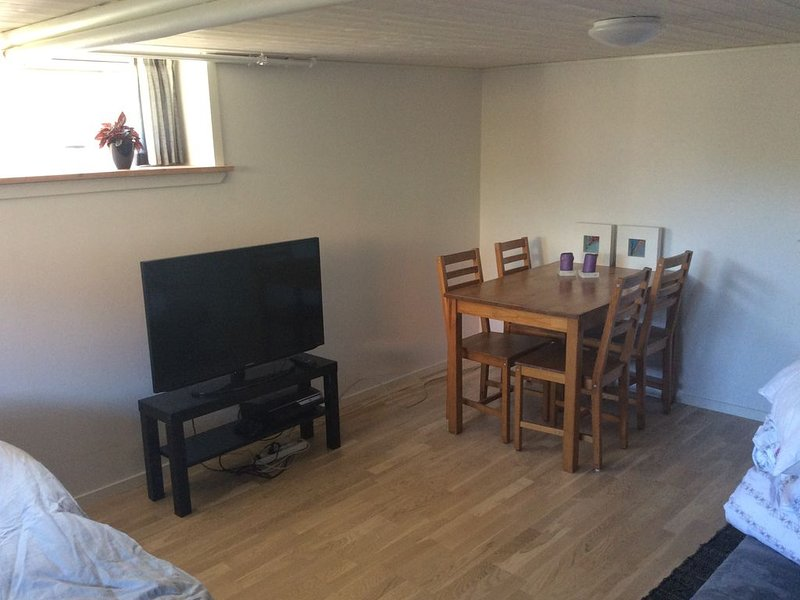 Large dry newly renovated basement room, location de vacances à Bredsten