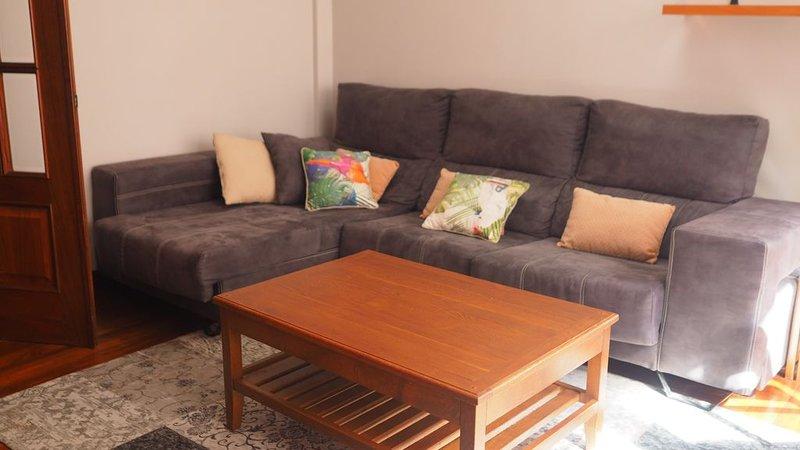 APPART CENTRE DE BILBAO 2 CH 3 PERS, vacation rental in Bilbao