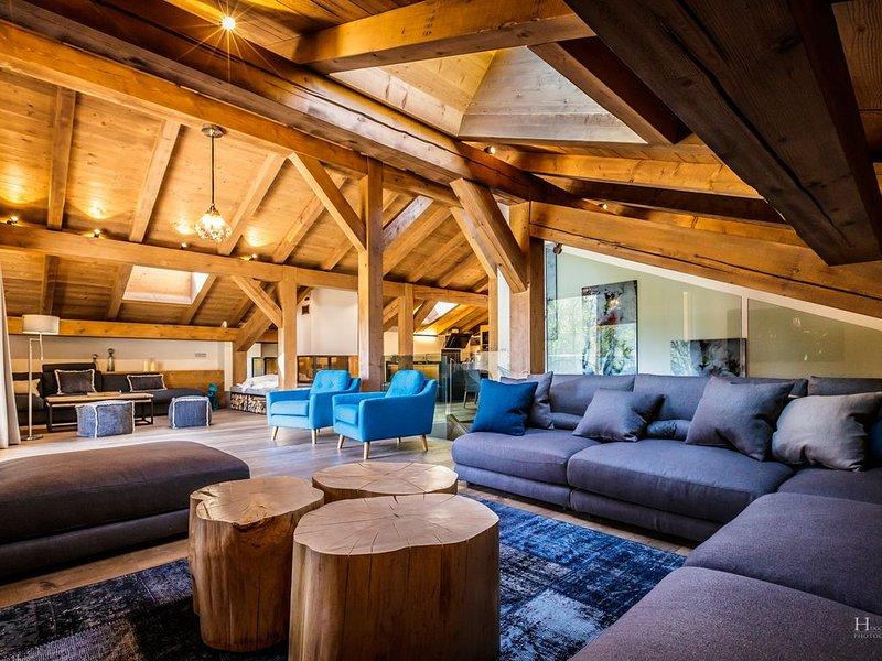 Duplex grand standing sous les toits dans ancien moulin intégralement réhabilit, holiday rental in Demi-Quartier