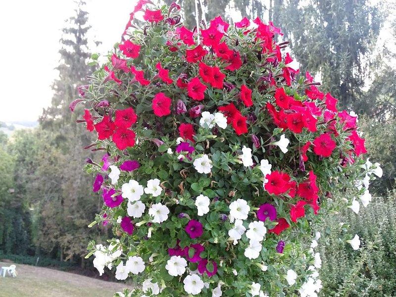 Idylle am Bach, großer Garten, 4km zu A7+A71, holiday rental in Friesenhausen