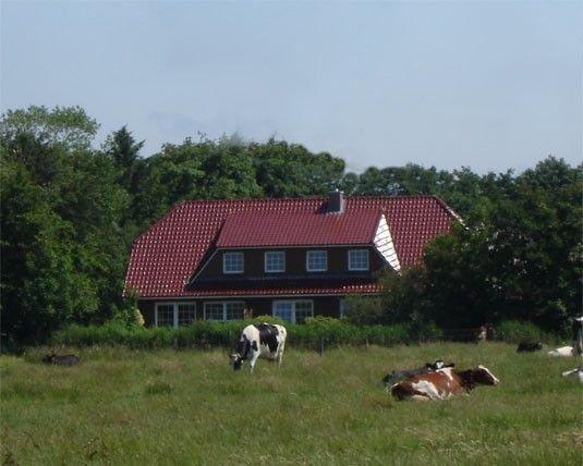 Ferienwohnung nähe Norddeich in ländlicher Idylle, vacation rental in Lutetsburg