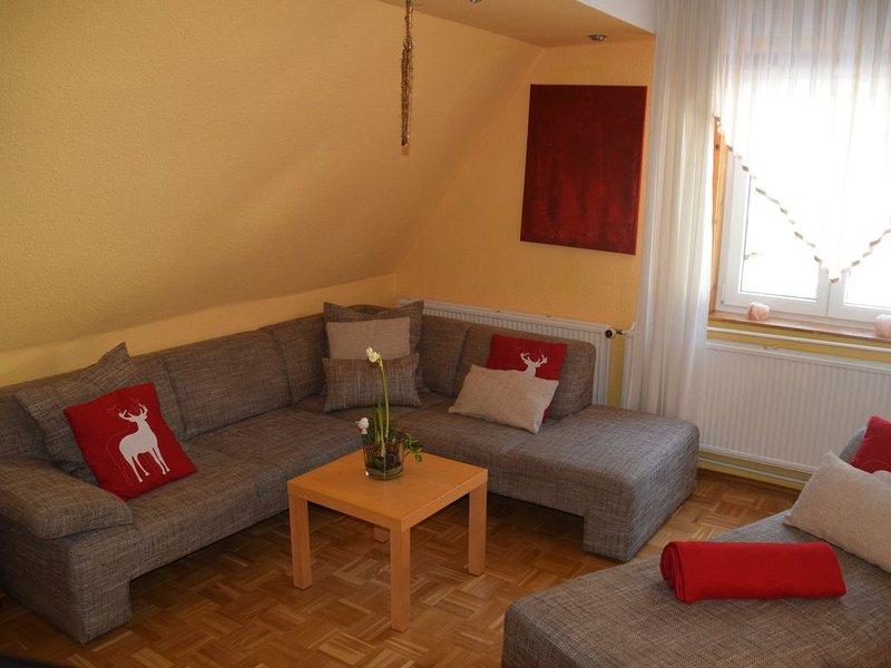 Fewo 'ENGEL' 8 (10) Pers. 4 Schlafzimmer/2DU/WC/ 120m²/Sauna/W-LAN Thür. Wald, holiday rental in Schleusegrund