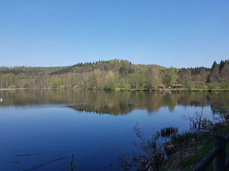 Ferienwohnung mitten im Idyll des Pfälzer Wald in Ludwigswinkel-Schöntal, holiday rental in Oberbronn