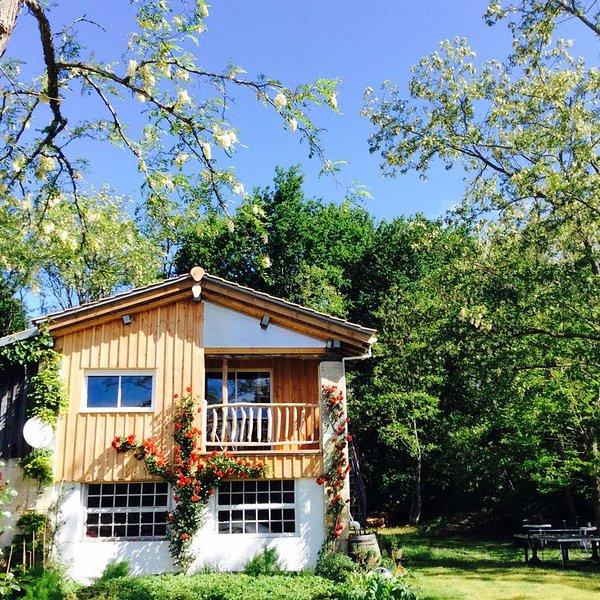 Urlaub zwischen Medoc-Weinbergen + Atlantikküste  (Montalivet) Neu  2017, holiday rental in Prignac-En-Medoc