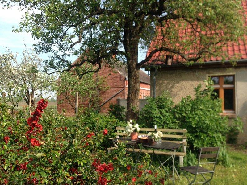 Urlaub auf dem Hollerhof im Oderbruch, holiday rental in Letschin