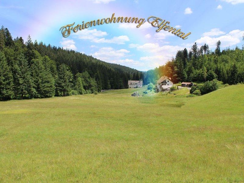 Komfort und Stille in romantisch bezaubernder Lage mitten im Grünen, holiday rental in Baiersbronn
