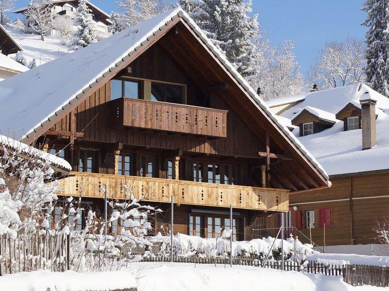 Grosszügige Dachwohnung mit herrlicher Berg- und Seesicht: Ackaert - Top of Thun, vacation rental in Spiez
