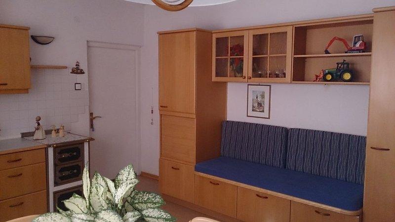 Haus Maderneid / FeWo Kirschbaum, holiday rental in Malosco
