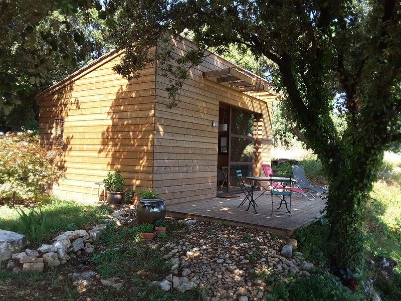 Mazet de la garrigue en pays minervois, holiday rental in Aigne