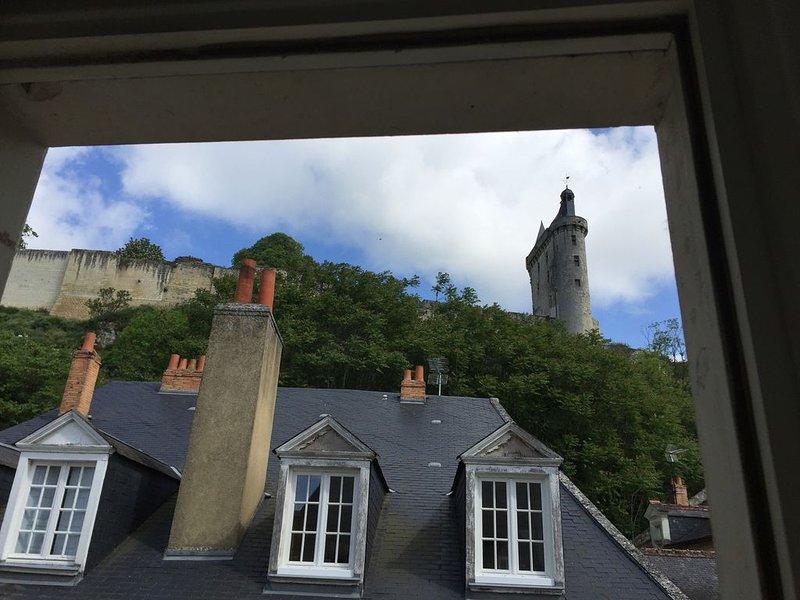 Location appartement 2 pièces meublé à CHINON au coeur de la ville médiévale R+1, holiday rental in Beaumont-en-Veron
