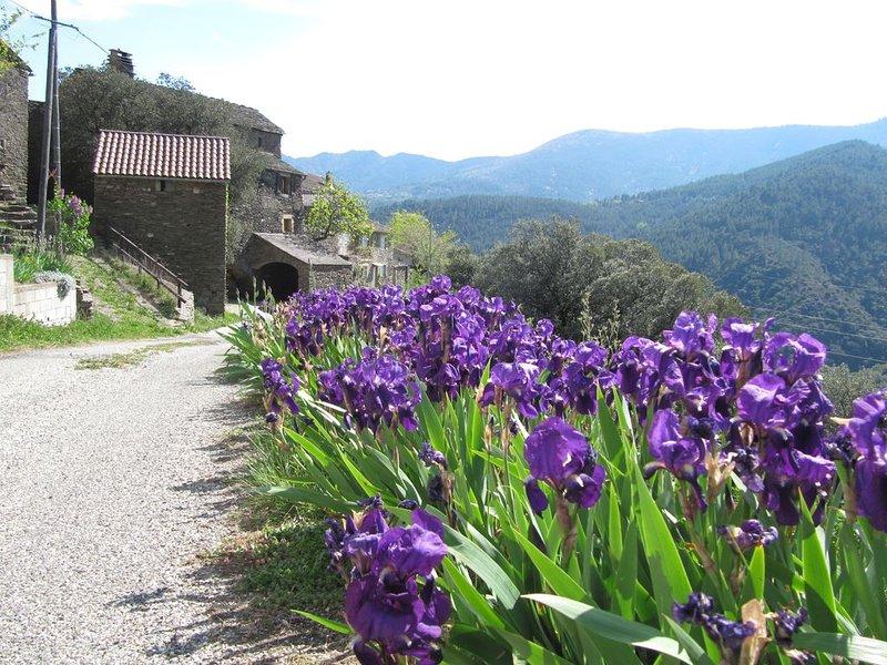 Maison au calme en Ardèche au pied des Cévennes, vacation rental in Les Salelles