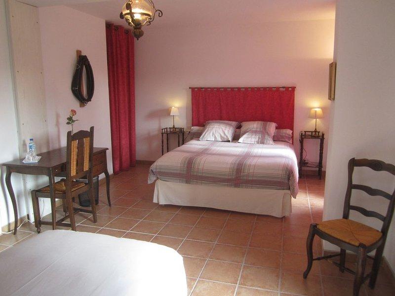 Chambre proche Zoo de Beauval  et château de Valençay, holiday rental in Argy