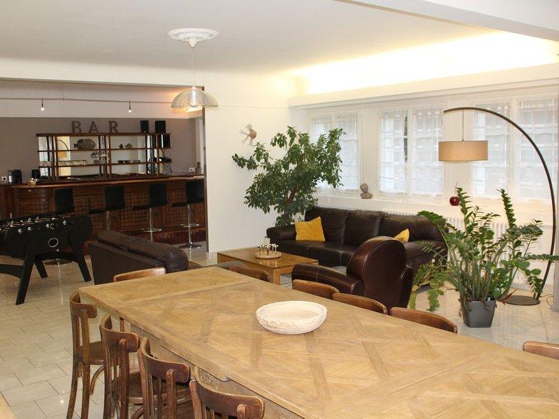 Villa MARPHI - SANTENAY -- LOIR ET CHER - VAL DE LOIRE, location de vacances à Chambon-sur-Cisse