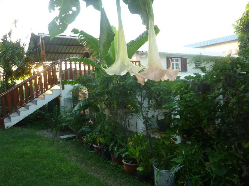 Kaz Breizoreol, au premier étage d'une maison familiale, entrée indépendante., casa vacanza a La Possession