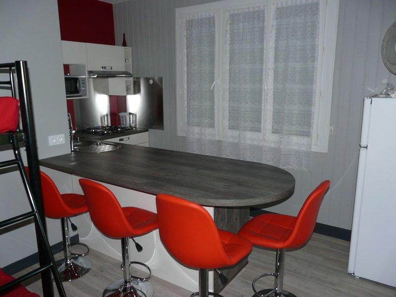 Appartement de 42 m2 pour 4 personnes, vacation rental in Capvern