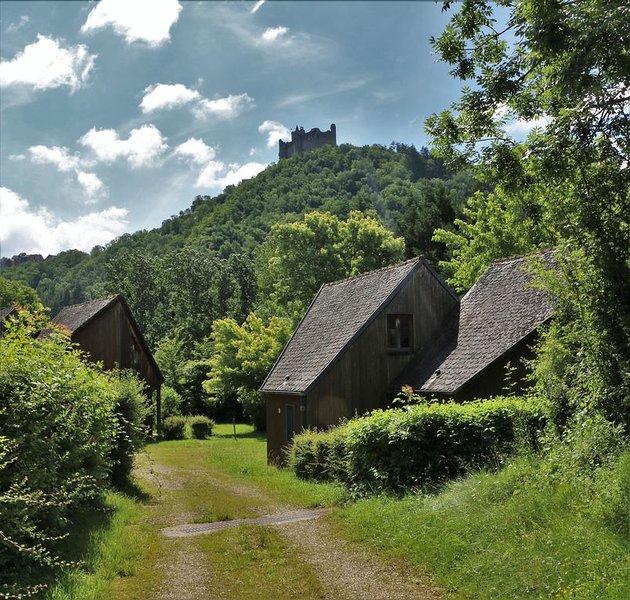 Chalets Nature au Hameau du Pontet 2 à 6 personnes, vacation rental in La Fouillade