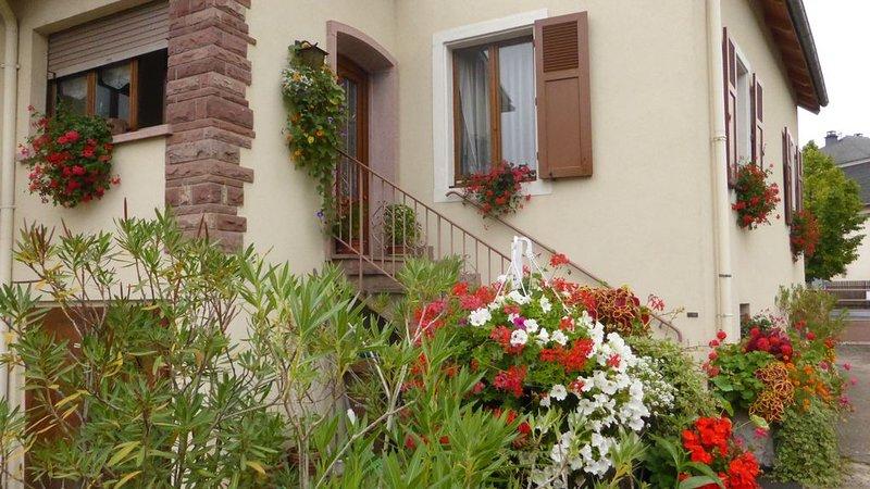 Gite dans une grande maison au centre de Colmar avec jardin et parking gratuit, Ferienwohnung in Colmar