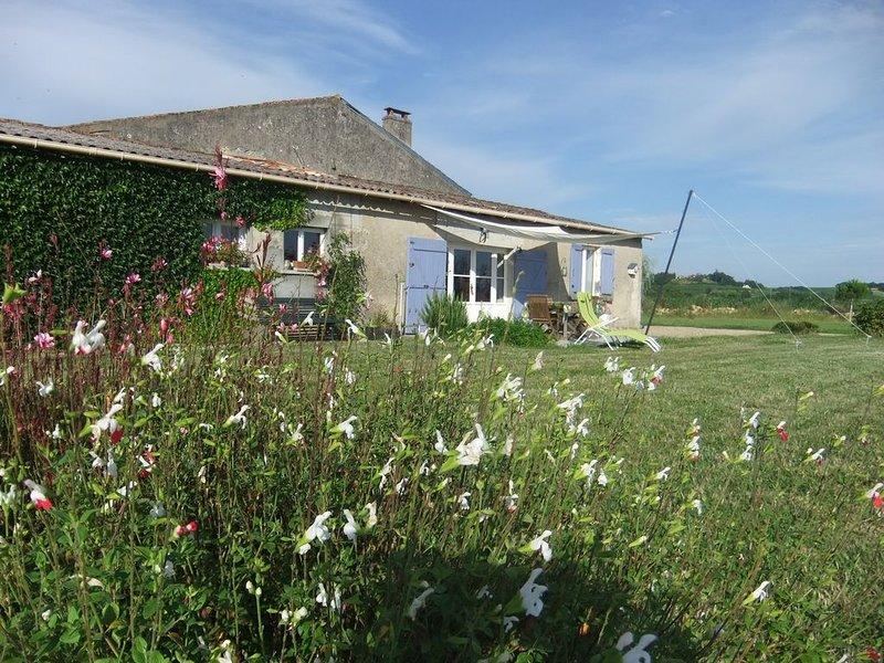 Séjour dans l'entre 2 mers entre Bordeaux et St Emilion et Yquem, holiday rental in Pujols-Sur-Ciron