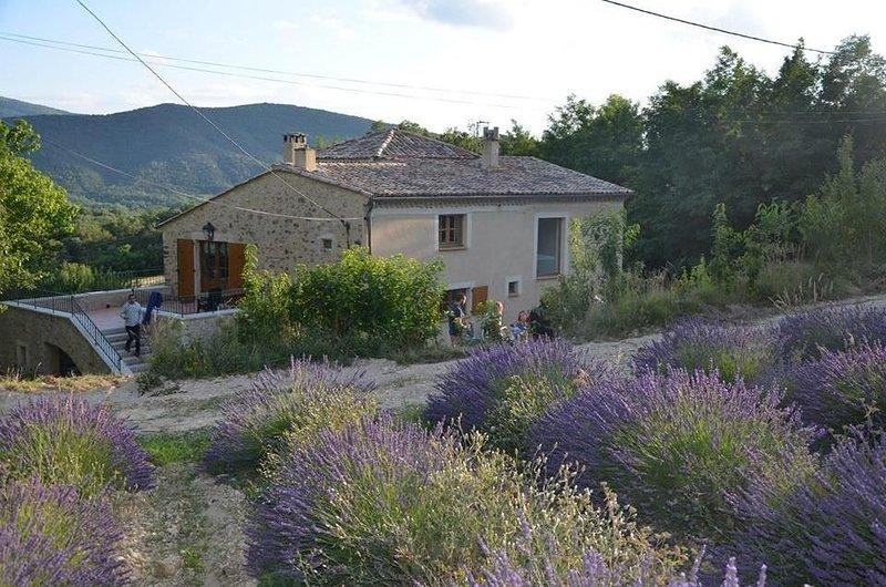 Maison familiale à Dieulefit avec Piscine - 8/10 personnes, Ferienwohnung in Roche-Saint-Secret-Beconne