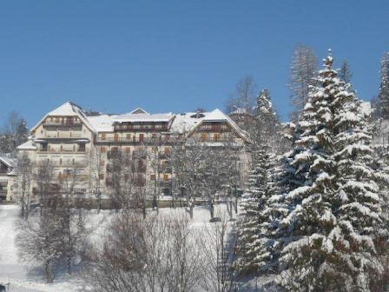 T2 ambiance montagne, location de vacances à Villard-de-Lans